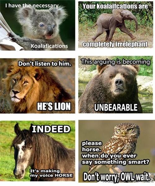 65 best images about teacher jokes on pinterest jokes