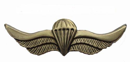Russian VDV SPETSNAZ Metal Paratrooper badge wings SWAT Russian VDV Airborne…