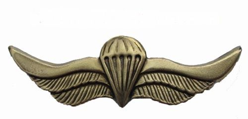 Russian VDV SPETSNAZ Metal Paratrooper badge wings SWAT Russian VDV Airborne…