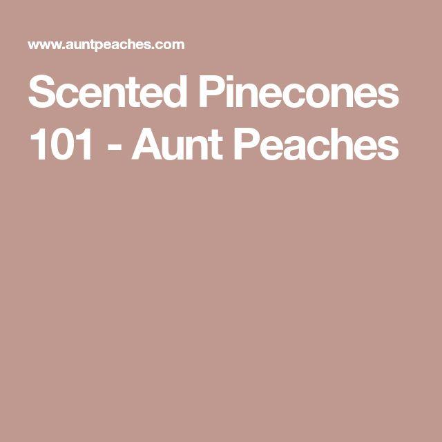 Scented Pinecones 101 - Aunt Peaches