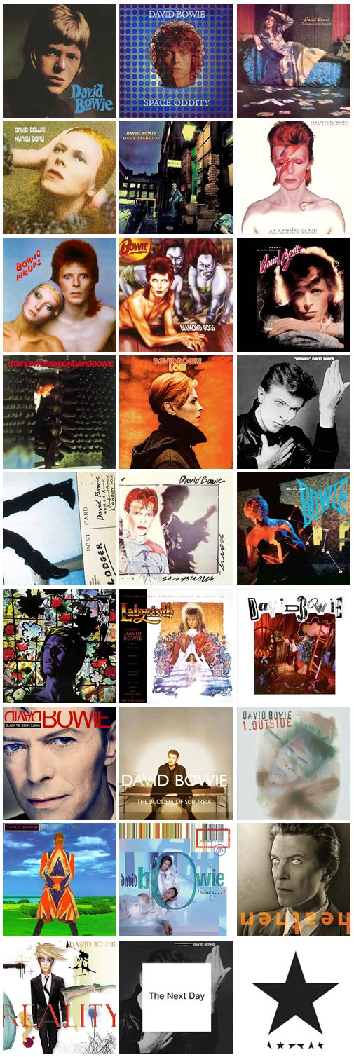 David Bowie Albums - sans The Laughing Gnome, Baal, Tin Machine, Tin Machine II and Toy. I'd throw the Davy Jones & the Lower Third, the Manish Boys, and the 1966 Pye Singles in there, too, for the sake of completeness.