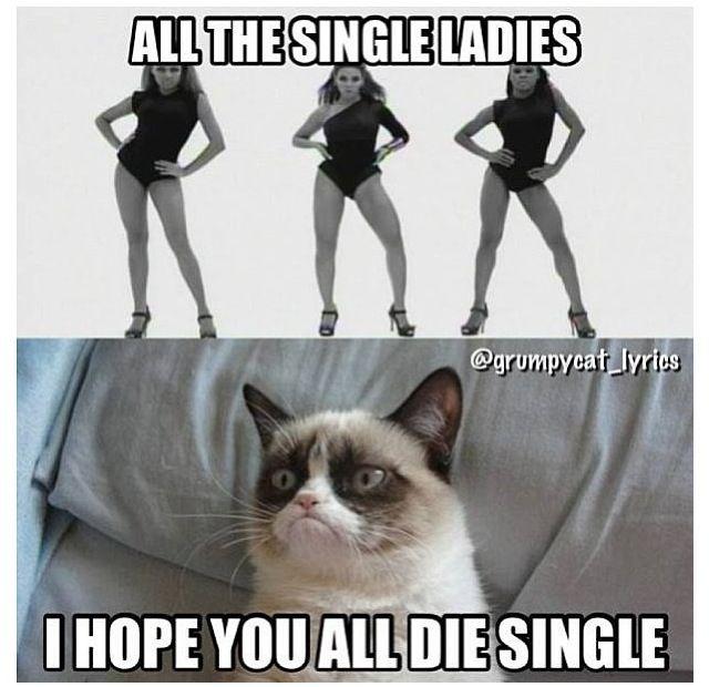 i'm single on valentines day