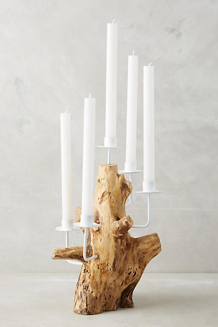 Anthropologie Teak Root Candelabra
