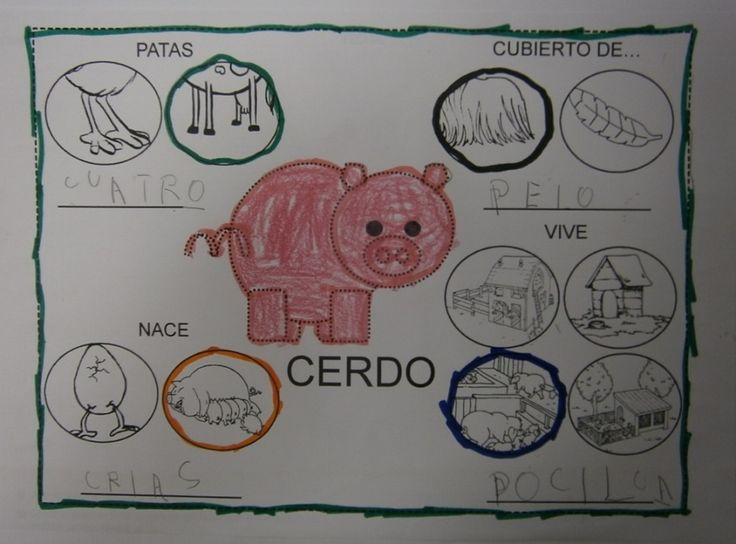 LA CLASE DE MIREN: mis experiencias en el aula: ANIMALES DE GRANJA: EL CERDO