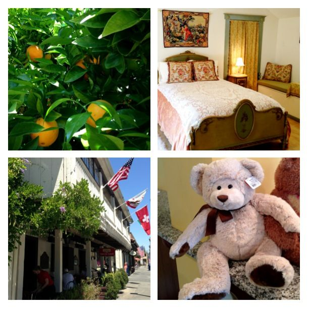 The orange tree at Alexandria's Plaza Suite, A room in Casa la Paloma, Wisteria and Flags on the Swiss Hotel, Teddy Bear at the Inn at Sonoma