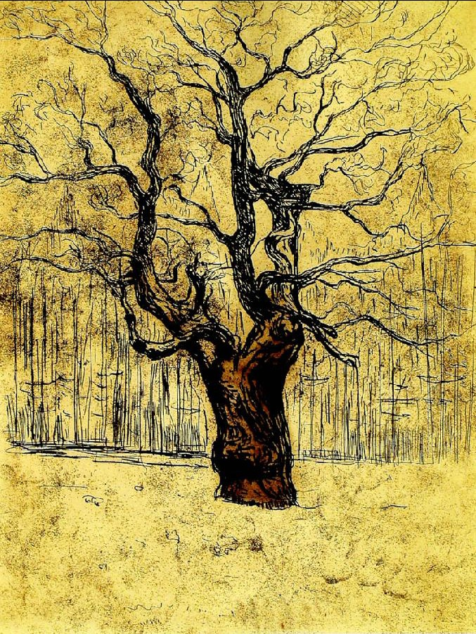 2013 Edvard Munch. You are not a tree, with a giving tree like look to it. Storms make trees take deeper root. Dolly Parton.