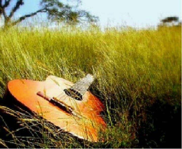 Yamaha guitar  http://pinterest.com/pin/164240717630430310/