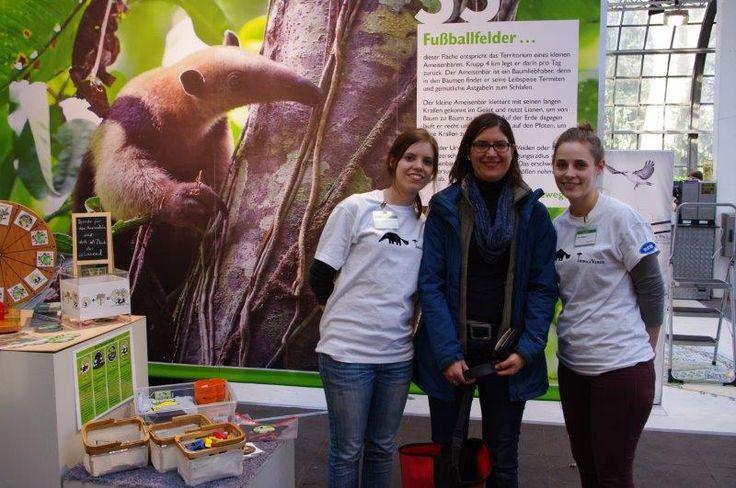 """Ehrenamtlich im Einsatz für den kleinen Ameisenbären  Wiederbewaldungsprojekt """"Ameisenbär sucht Frau"""" in Costa Rica zum Schutz und Erhalt des kleinen Ameisenbären https://www.betterplace.org/de/projects/36425-ameisenbar-sucht-frau-werde-zum-wingman   #Regenwald #Rainforest #Tamandua #Ameisenbär #Anteater #AmeisenbärSuchtFrau #CostaRica #Naturschutz #Conservation #TropicaVerde #MonteAlto"""