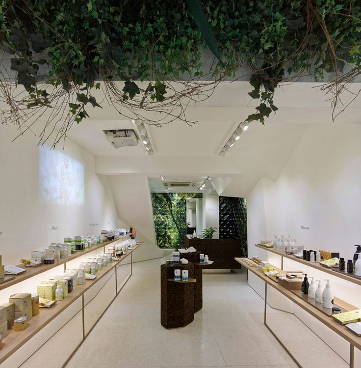three dogs design NZ wild bounty flagship store in hong kong