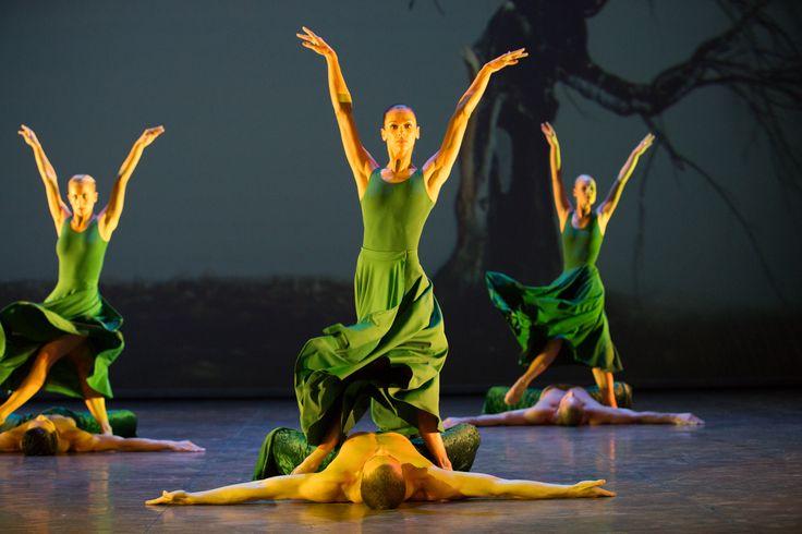 Ballet Company of Győr: Carmina Burana