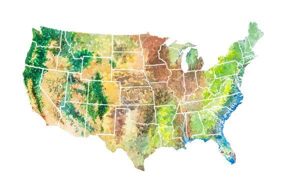 """Nieuw in mijn wanddecoratie webshop: """"United States Landkaart in Aquarel"""""""
