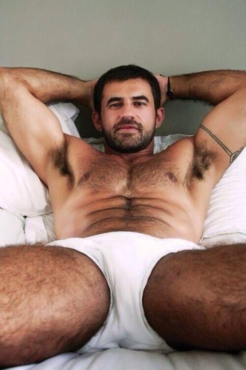 hairy sweaty gay bear jocks