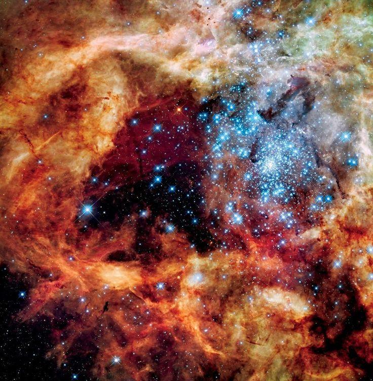 De ruimtetelescoop Hubble maakt al 26 jaarde mooiste beelden van het heelal. Een van de topfoto's is deze opname van een jonge sterrenhoop in de Tarantulanevel.