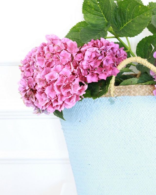Pink hydrangeas in blue Provincial Home Living basket.