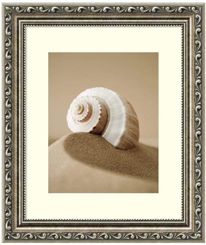 Beach Wall Hanging Picture Of A Shell Sponsored Wallhanging
