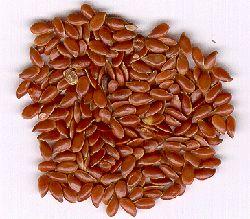 Применение семян льна.   Блог Ирины Зайцевой