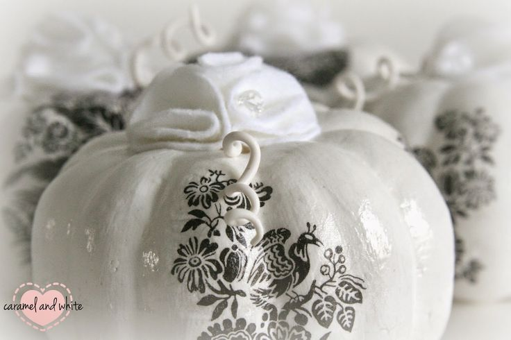 Dynia Biała. handmade by caramelandwhite