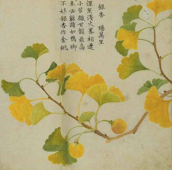 十月:木叶落。芳草化为薪。苔枯萎。芦始荻。朝菌歇。花藏不见。