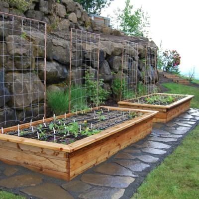 These are really beautiful raised beds. I love the stone path around them too!