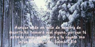 Tu palabra diaria... Salmos 23:4..