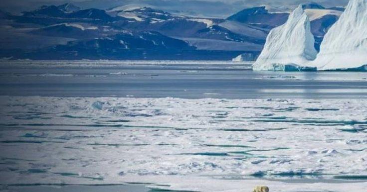 Ανήσυχοι οι μελετητές για τον Βόρειο Πόλο: Θερμοκρασία 20 βαθμούς πάνω από το κανονικό τα Χριστούγεννα