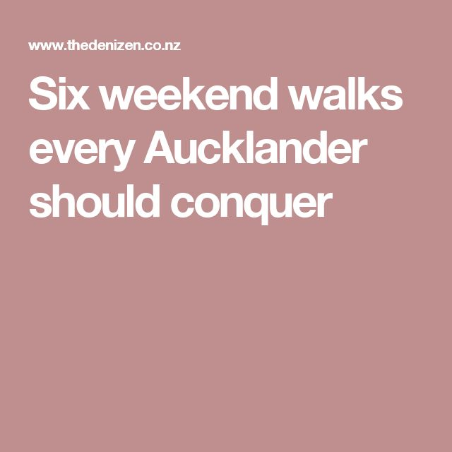 Six weekend walks every Aucklander should conquer
