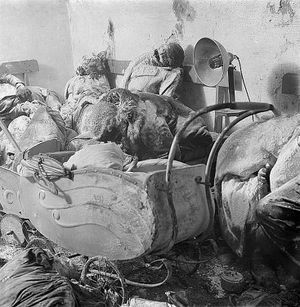 After the Allied terror bombing of Dresden in World War II, a German mother in death stares at her charcoaled twins in a baby carriage.