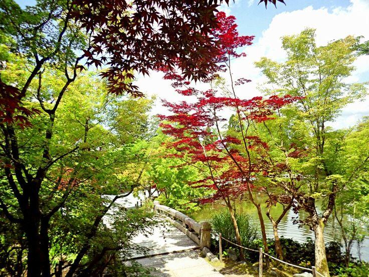 Gardens  Eikando  May 2017