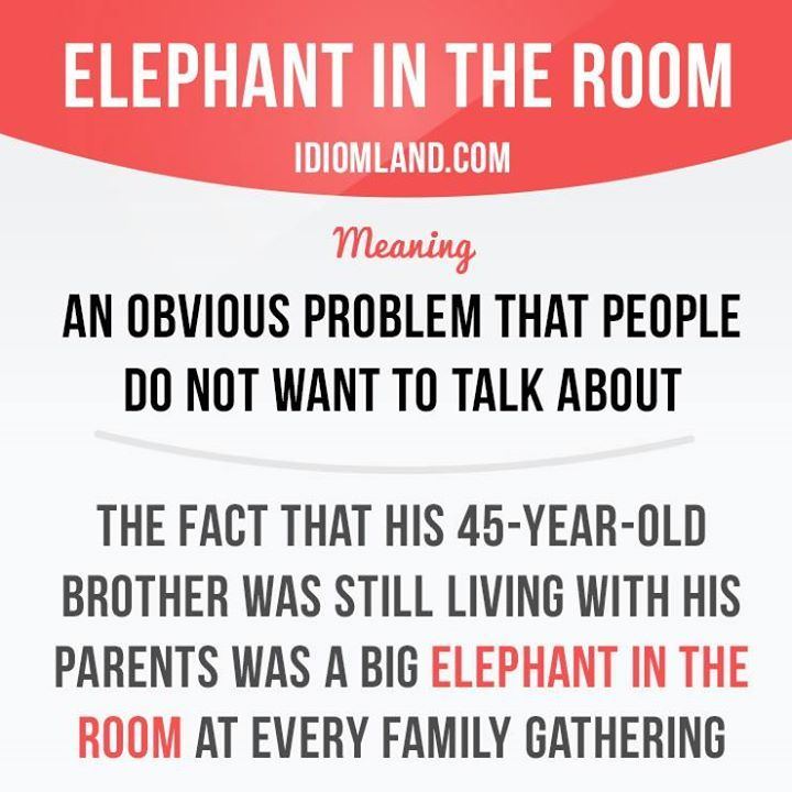 Elephant In The Room Meaning