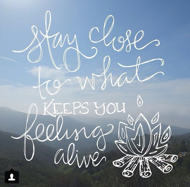 ➳➳➳☮American Hippie Quotes- Stay alive                                                                                                                                                      More