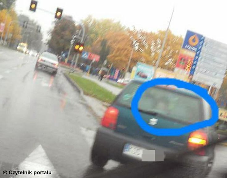 Niebezpieczna zabawa w samochodzie #Oświęcim #fotelik #dziecko #niebezpieczeństwo #przewóz