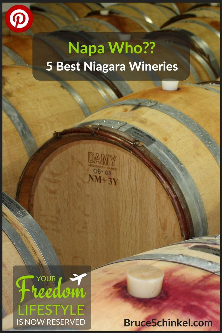 Napa Who? Did you know some of the best wines in the world come from Niagara? It's true! With so many varietals, and well-established wineries, it's easy to see why. Here are my picks for The 5 Best Niagara Wineries   wineries in Niagara   Niagara-on-the-Lake   Twenty Valley  