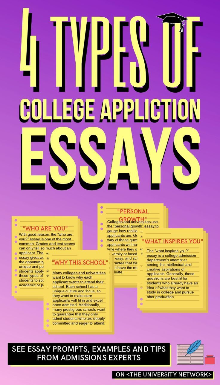 What Are College Looking For In Application Essay The University Network Examples Expert