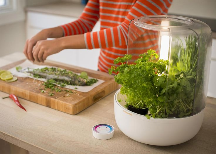 World Of Accessories Kitchengarden Basic By Fiskars Your