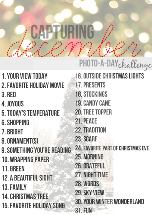 December Photo a day Challenge, dec daily photo ideas