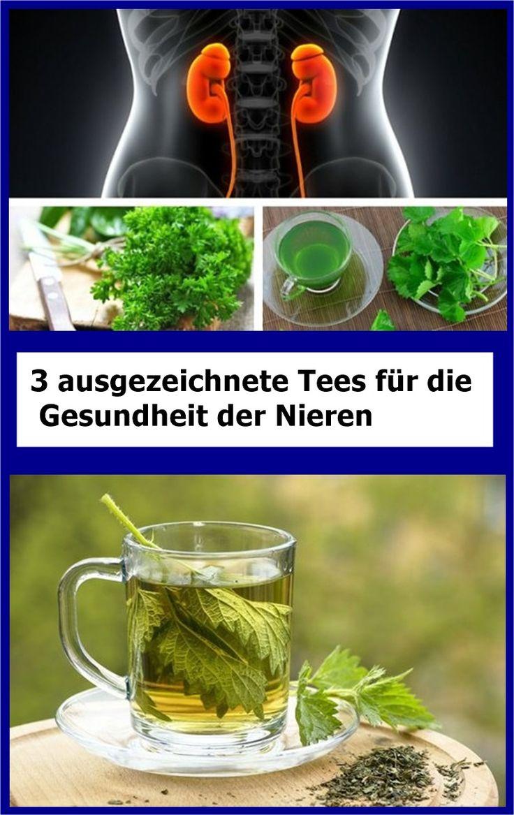 3 ausgezeichnete Tees für die Gesundheit der Nieren | drndex.com