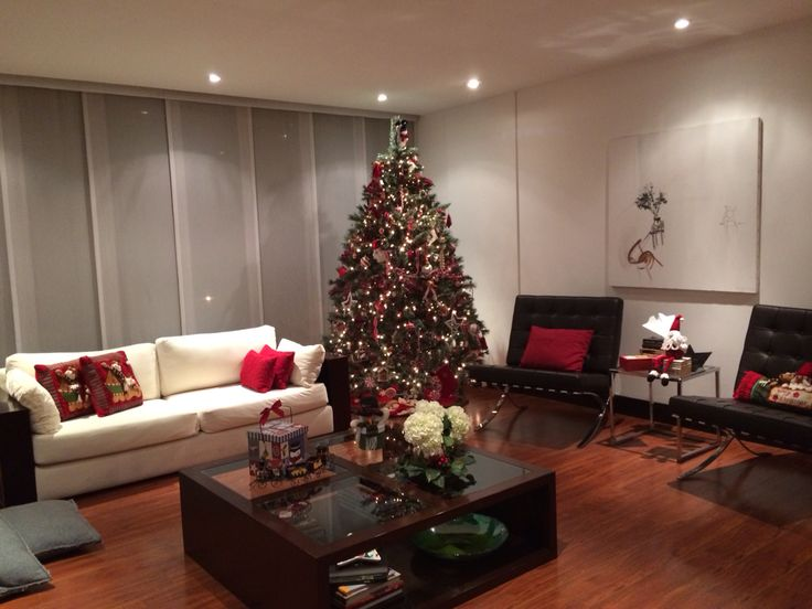 Llego la Navidad a esta casa!!!