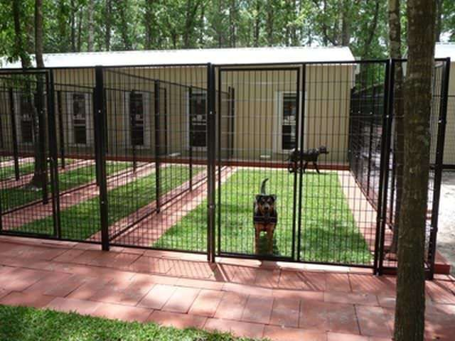 15 Best Outdoor Dog Kennel Ideas My Cute Dog Blog In 2020 Luxury Dog Kennels Dog Kennel Outdoor Diy Dog Kennel