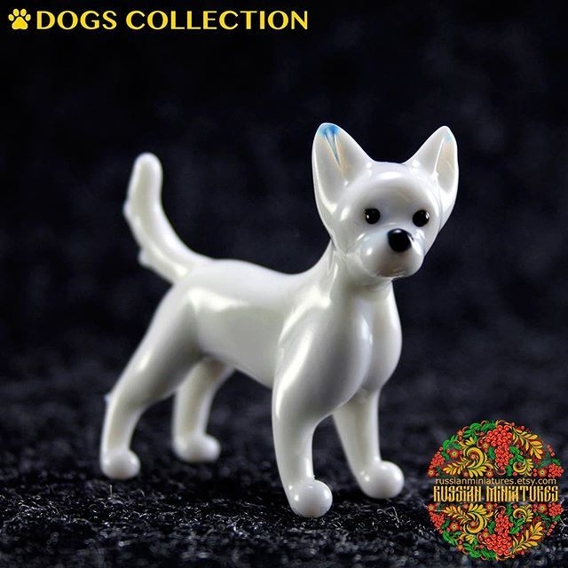 Color Glass Chihuahua Figurine.  Check out here: https://goo.gl/sxDFXE Dogs collections: https://goo.gl/HeS43f -------------- Follow us @russianminiatures if you love glass figurines! Made in  Russia St. Petersburg.Worldwide shipping. Update pictures everyday ! -------------- Follow us on: - https://goo.gl/NKk858 -------------- #russianminiatures #handmade