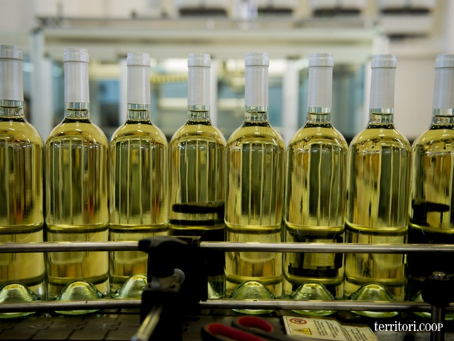 Pronto per essere etichettato #vino #Trapani #Sicilia #Fazio