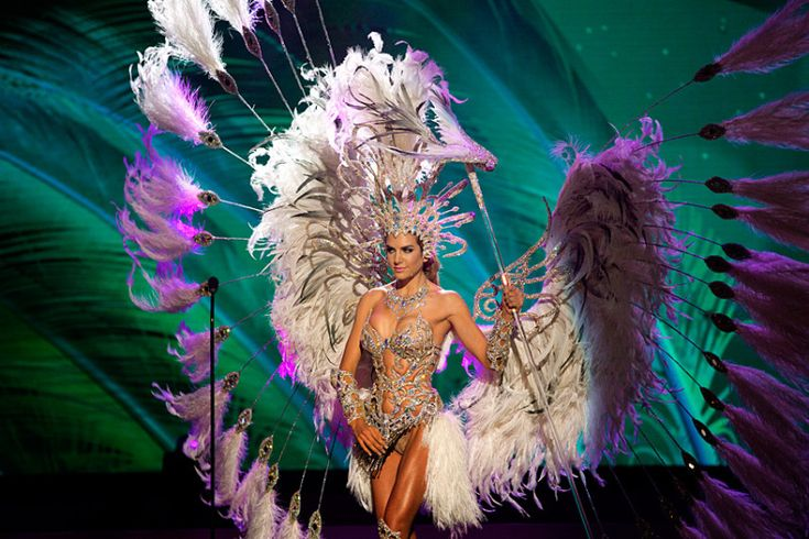 Miss Argentina - National costume show during the 63rd annual Miss Universe Competition in Miami