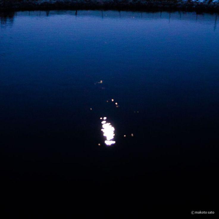 水面にただよう月