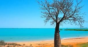 Image result for images Broome