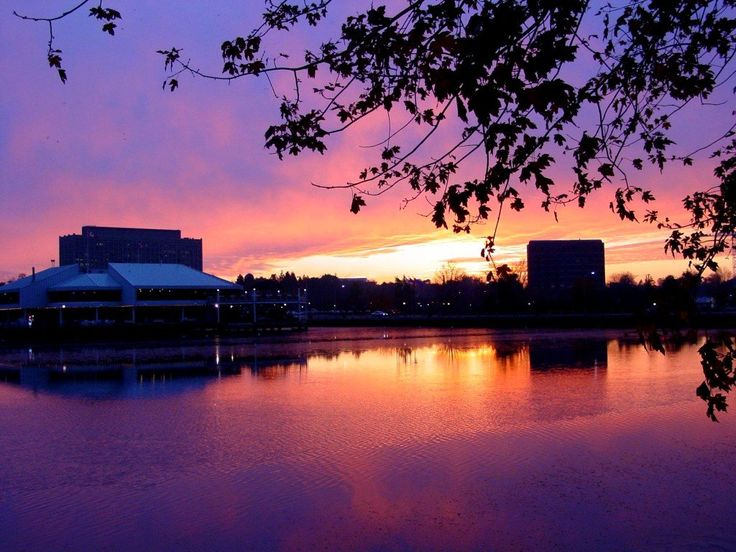 Dow's Lake <3