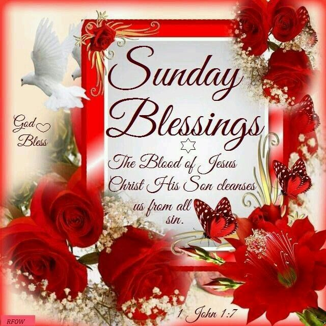 107 best sunday blessings images on pinterest morning blessings to my sister and yourswish you a blessed sunday god bless you cheryl m4hsunfo