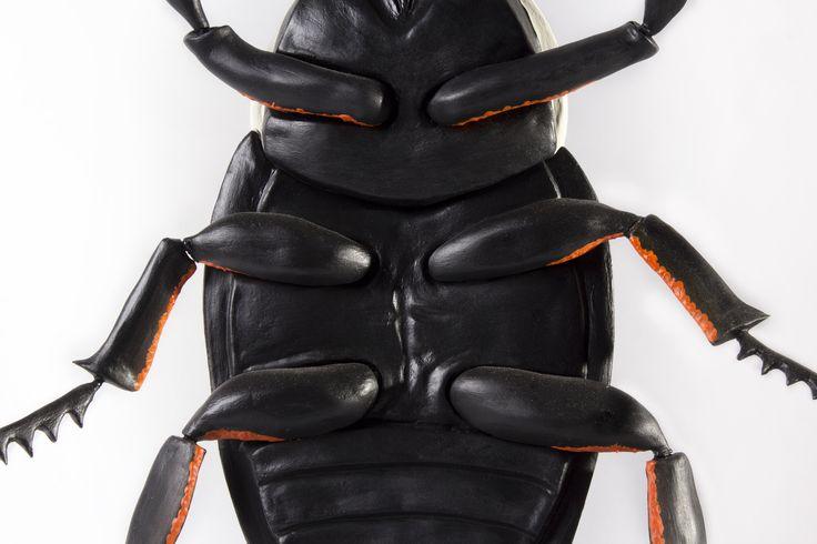 Goliath beetle, Sustainable Art.