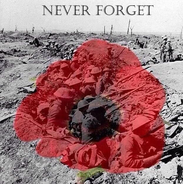This year is the 100 year anniversary of the beginning of World War One...