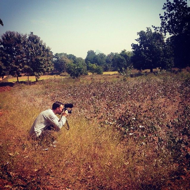 Muka kids photographing our organic cotton  growing on the bush near the village of Vikamal in Orissa, India. mukakids.com