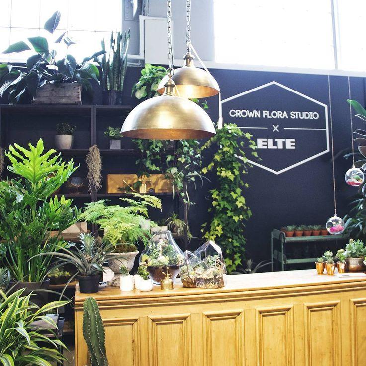 How beautiful is this @crownflora pop--up shop? We know you'll find something to love! #plantsanddesign #furniturelovesplants #popupshop #crownfloraxelte #crownflora #torontoterrariums #terrariums #homedecor #homedesign #elteshowroom