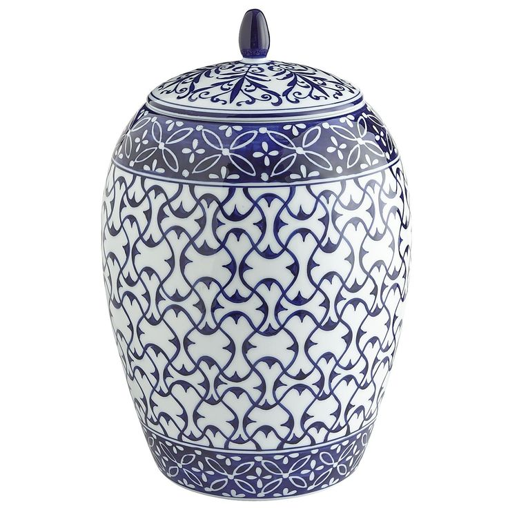 Tang Blue & White Canister - Large - Pier1 US